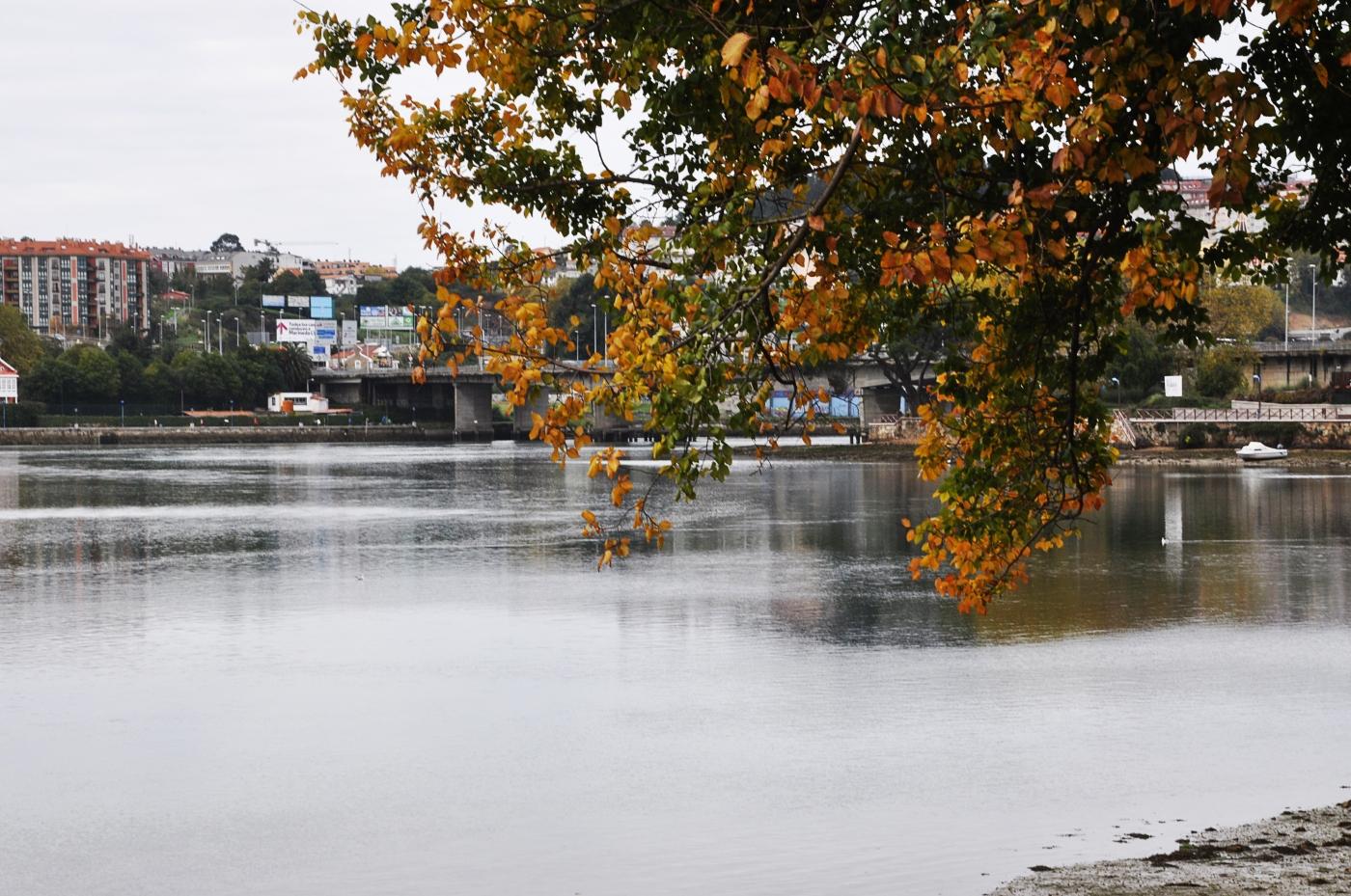 Outono na ría do Burgo